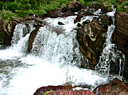 Montana Digital Art - Red Rock Falls along Swiftcurrent Pass Trail in Glacier NP by Ruth Hager