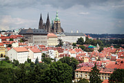 Prague Castle Prints - Red Rooftops of Prague Print by Linda Woods