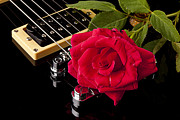 Music Prints - Red Rose Black Electric Guitar Print by M K  Miller