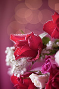 Rose Art - Red Rose Bouquet Bokeh Still Life by Ethiriel Photography