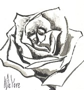 Beautiful Rose Drawings Prints - Red Rose Print by Kip DeVore