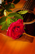 Stretched Canvas Framed Prints - Red Rose Natural Acoustic Guitar Framed Print by M K  Miller
