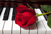 Color Red Framed Prints - Red rose on piano keys Framed Print by Garry Gay