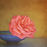 Red Rose Print by Photo - Lyn Randle