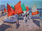 Sunfish Prints - Red Sails Print by Andrew Macara