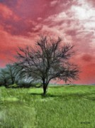 Grass Digital Art - Red Sky by Jeff Kolker
