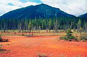 British Columbia Posters - Red Soil of Canadian Rockies Poster by George Oze