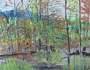 Quebec Pastels - Red Spruce On Wet Land Woburn Quebec Canada by Francois Fournier