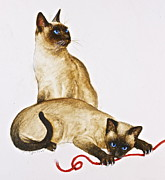 Cat Portraits Mixed Media Prints - Red String Print by Cliff Spohn