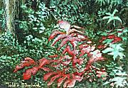 Falls Paintings - Red Sunlit Leaves by Todd A Blanchard