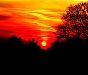Sunlight Metal Prints - Red sunset Metal Print by Jasna Buncic