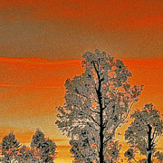 Tree Tops Posters - Red Sunset With Trees Poster by Ben and Raisa Gertsberg