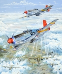 P51 Mustang Drawings Posters - Red Tail 61 Poster by Charles Taylor