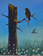 Red-tailed Hawk Paintings - Red Tailed Haw by Linda Larson