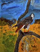 Red-tailed Hawk Paintings - Red-tailed hawk perch in tree by Swabby soileau