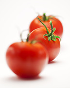 Whit Prints - Red tomato Print by Jun Pang
