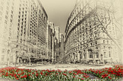 Tall Buildings Digital Art Originals - Red Tulips by Svetlana Sewell