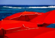 Waves. Ocean Prints - Red Umbrellas  Print by Karen Wiles