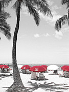 Kerri Ligatich Prints - Red Umbrellas on Waikiki Beach Hawaii Print by Kerri Ligatich