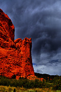 Colorado Springs Art - Red Velvet by Emily Stauring
