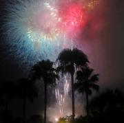 White Fireworks Posters - Red White and Blue Florida Poster by David Lee Thompson
