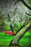 Spring Scenes Art - Red White and Green by Emily Stauring