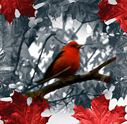 Tree Leaf On Water Mixed Media Posters - Red Wild Bird Poster by Debra     Vatalaro