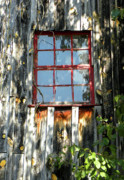 Old Mill Of Guilford Prints - Red Window Print by Sandi OReilly