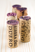 Cellar Posters - Red wine corks from Ribera del Duero Poster by Frank Tschakert