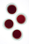 Geometric Prints - Red wine glasses Print by Frank Tschakert