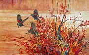 Blackbirds Originals - Red-winged Blackbirds by Floy Zittin