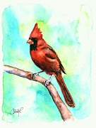 Baseball Originals - Redbird Cardinal by Christy  Freeman
