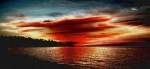Blue Trees Prints - Redondo Red Sunset Print by David Patterson
