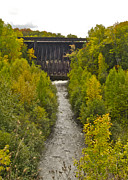 Autumn Trees Prints - Redridge Steel Dam 7844 Print by Michael Peychich