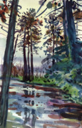 Forest Watercolor Art - Redwood Reflections by Donald Maier