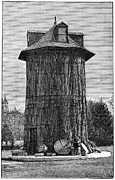Washington Mall Prints - Redwood Tree House, 19th Century Print by