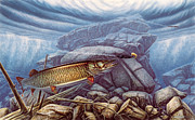 Underwater Painting Prints - Reef King Musky Print by JQ Licensing