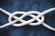 Y120907 Art - Reef Knot by Jamie Grill
