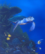 Sea Turtles Paintings - Reef Life by Michael Allen