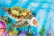 Hawaii Sea Turtle Paintings - Reef Surfin by Tanya L Haynes - Printscapes