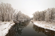 River Greeting Cards Prints - Refections On The Poudre River Print by James Steele