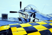 P51 Mustang Drawings Posters - Reflection Poster by Charles Taylor
