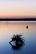 Manasquan Reservoir Prints - Reflection Print by Ekaterina LaBranche