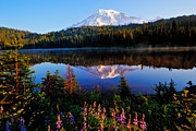 Lake Washington Posters - Reflection Lake Mt Rainier Poster by Alvin Kroon