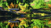 Whidbey Island Wa Prints - Reflection Print by Louie Rochon