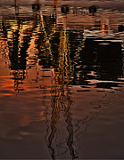 Reflection Print by Mario Celzner