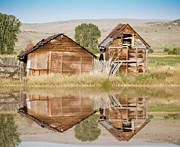 Log Cabin Art Framed Prints - Reflection of an Old Building Framed Print by Donna Van Vlack