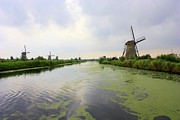 Nederland Photo Prints - Reflection of Sky at Kinderdijk Print by Carol Groenen