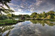 Fort Collins Metal Prints - Reflection on the Poudre River Metal Print by Shane Linke