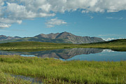 Reflections Of Sky In Water Photo Prints - Reflections along the Denali Highway  Print by Tracey Hunnewell